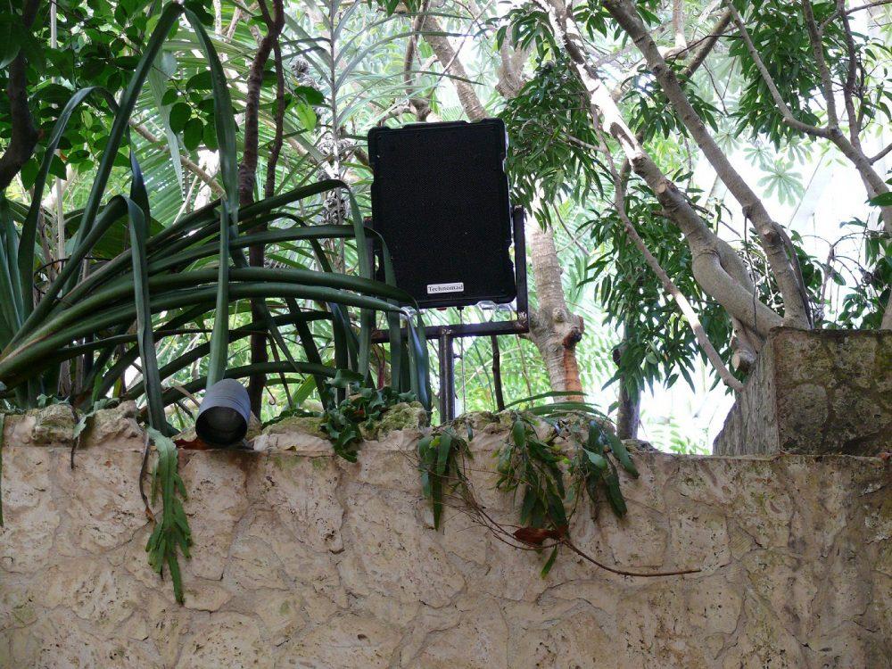 window world dallas photos dallas world aquarium exhibits rely on technomad loudspeakers foh